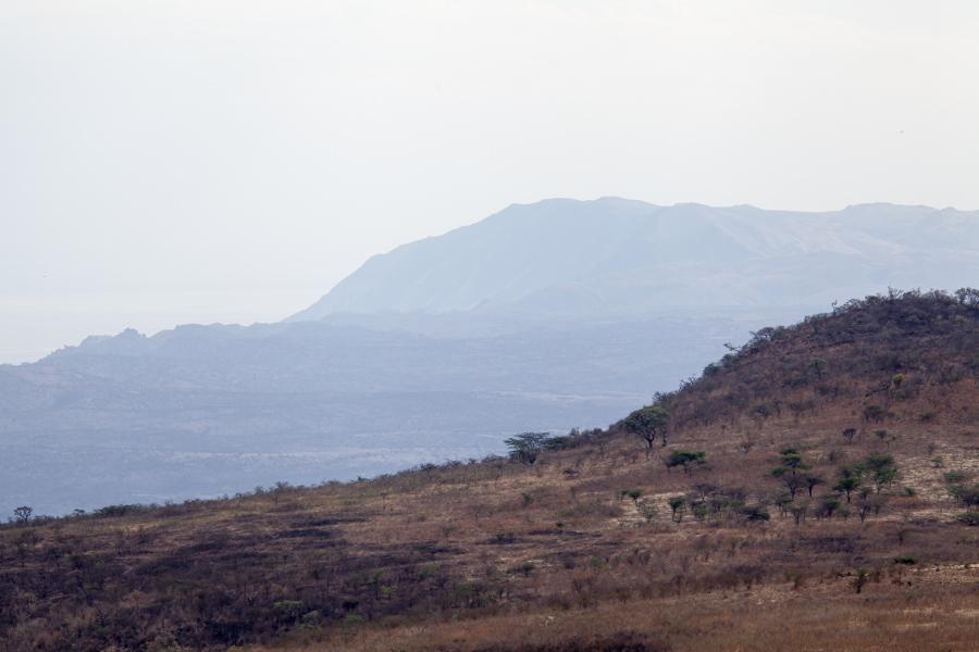 safarioct2013-28